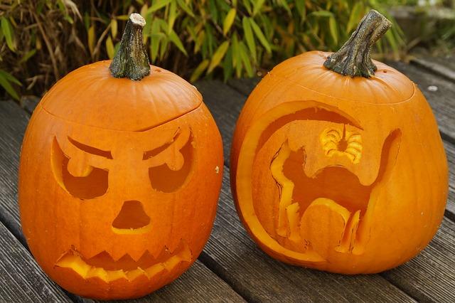 pumpkin-1005002_640